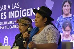 Foro de Alto Nivel: Empoderar a las Mujeres Indígenas para Erradicar el Hambre y la Malnutrición de América Latina y el Caribe