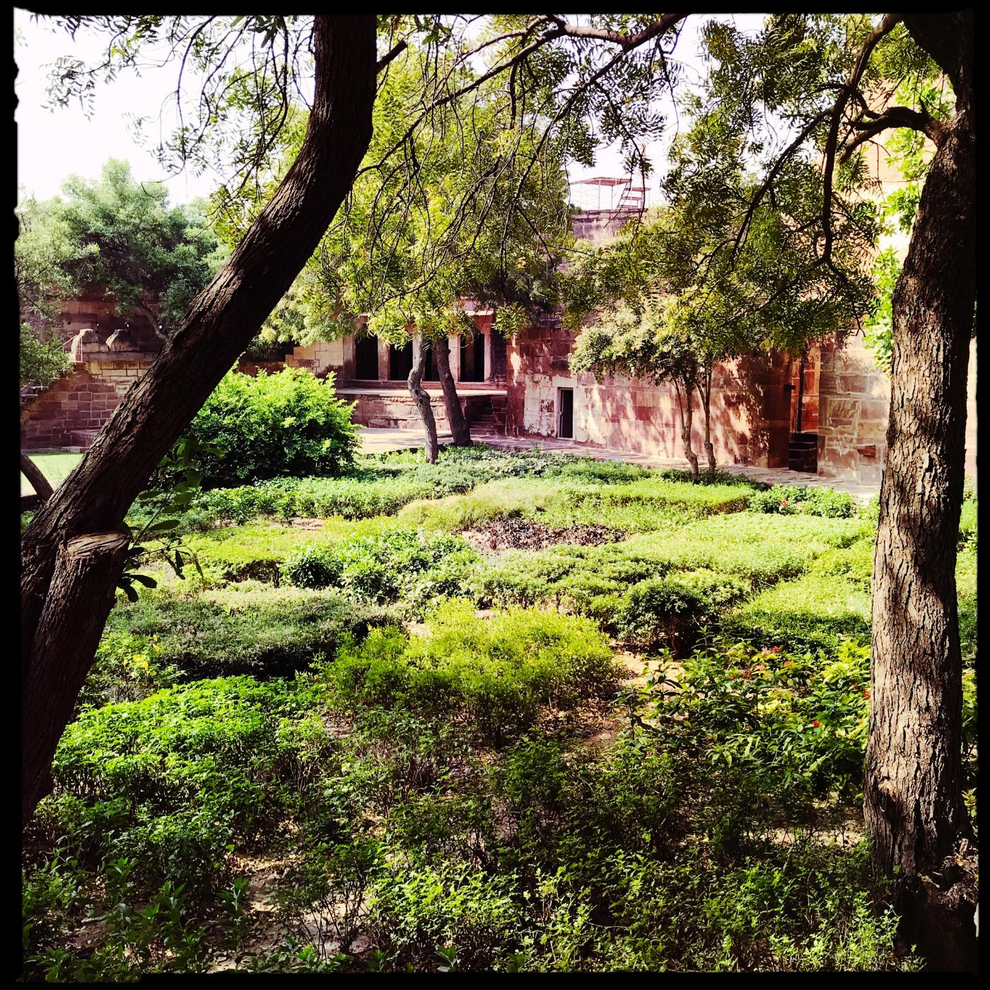 628-India-Jodhpur