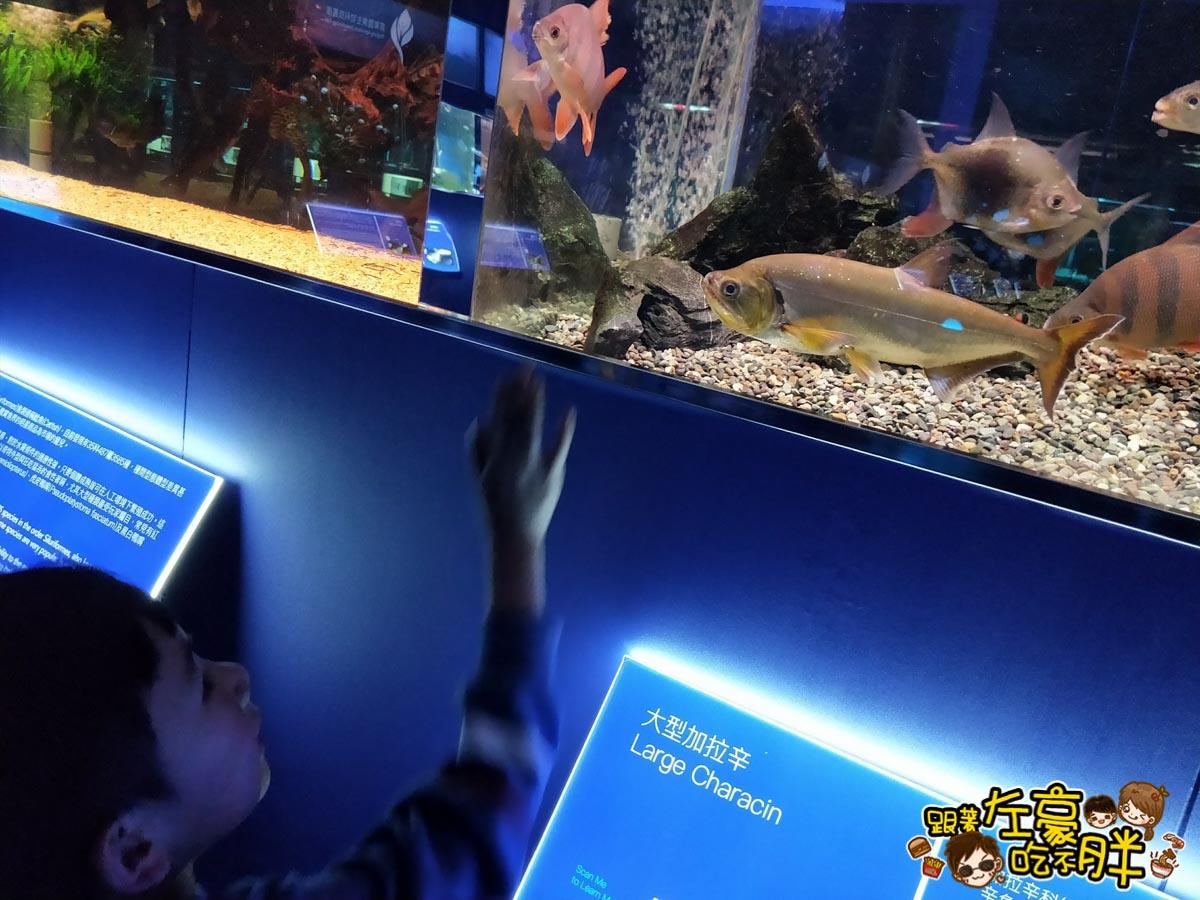 屏東生技園區國際級水族展示廳-30