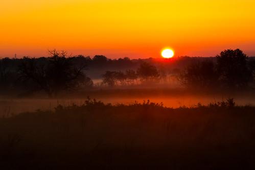 2016 era landscape scene sunrise year bentonville arkansas unitedstates us