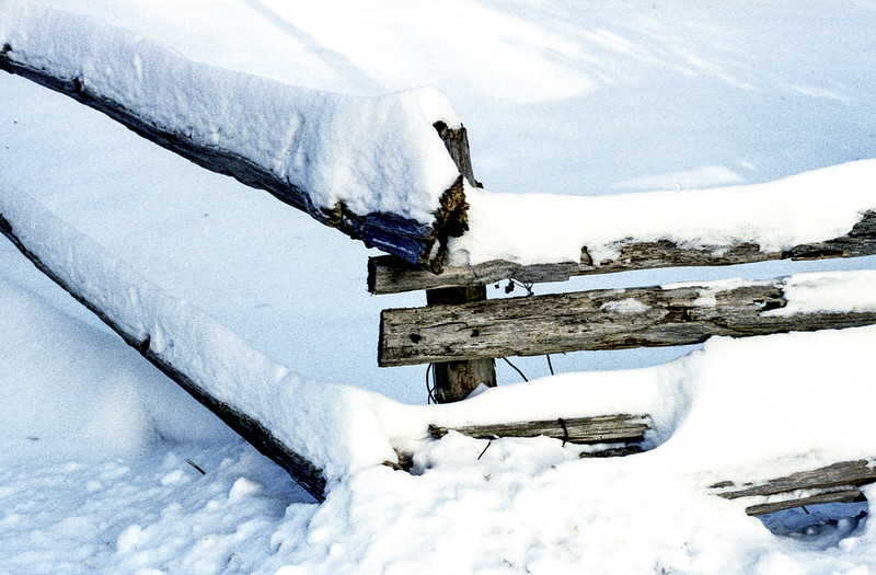 Snow Covered Wood Fence