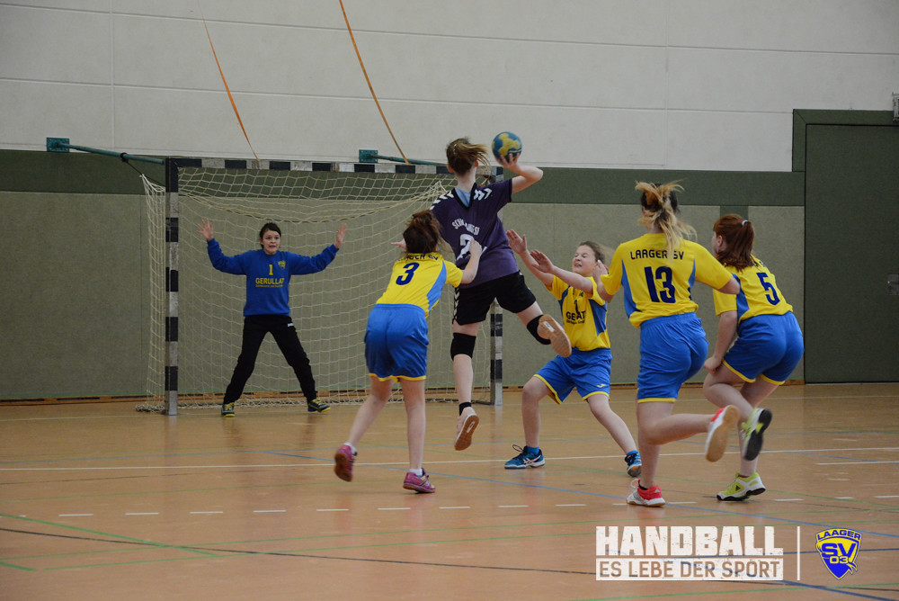 20180224 Laager SV 03 Handball wJD - Schwaaner SV (15).jpg