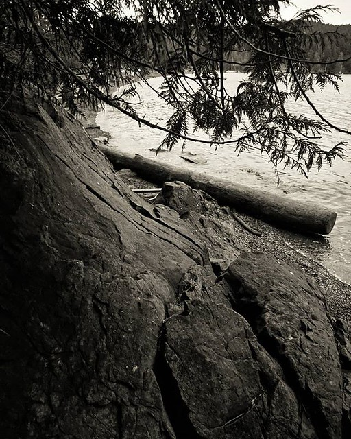 Not sunrise. Rocks! Trees! Water! Pender Island, BC, Canadaland.