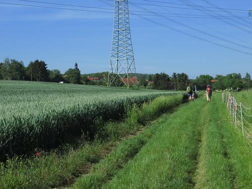 20170601 05 037 Regia Wald Weg Feld Pilger ElisabethB