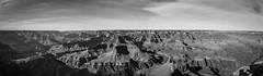 Grand Canyon Black and White Panorama