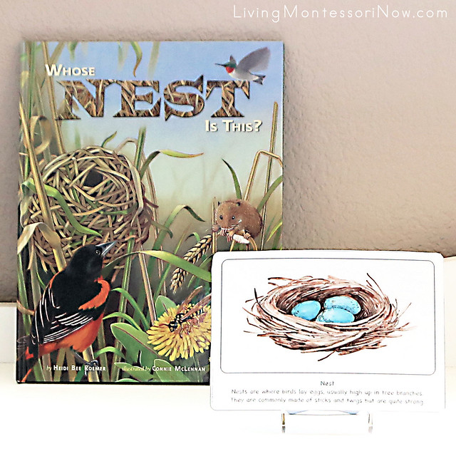 Whose Nest Is This Book with Nest Culture Card