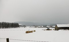 The snow pace of life in Aberdeenshire