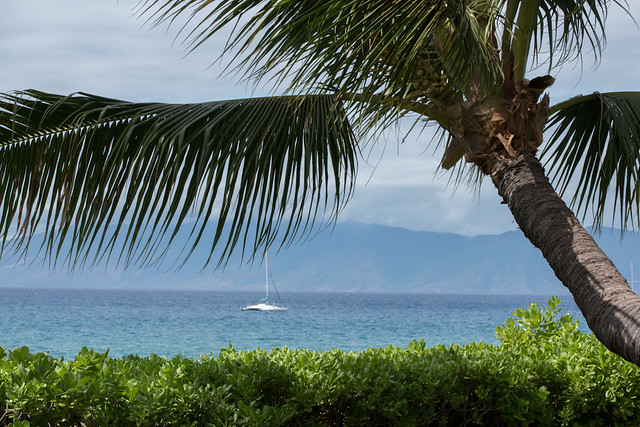 View from our cottage at Royal Lahaina