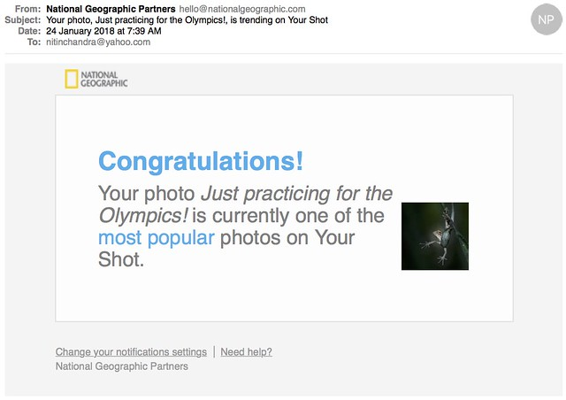 Your photo Just practicing for the Olympics is trending on Your Shot