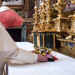pope-francis-gerbil-i