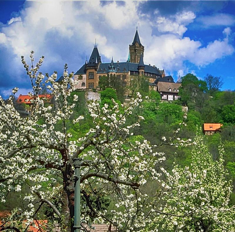 Wernigerode Castle. Credit Andreas Tille