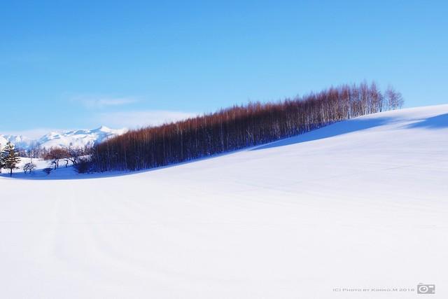 十勝岳の見える丘