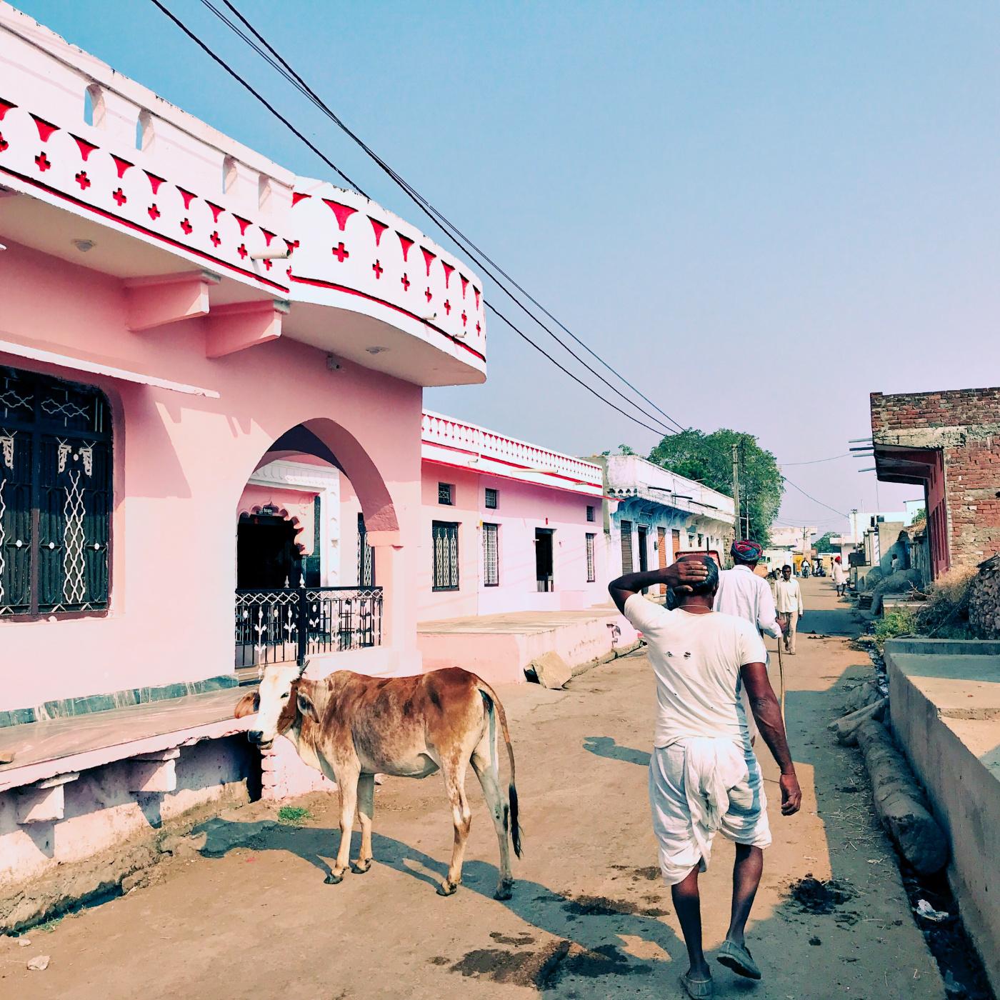 749-India-Bijaipur