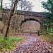 Bridge over the Rishworth Branch 12.