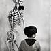 O esqueleto by juanrfa