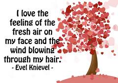I Love the Feeling of the Fresh Air...