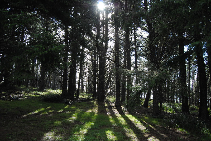 Cape Meares State Park, Oregon