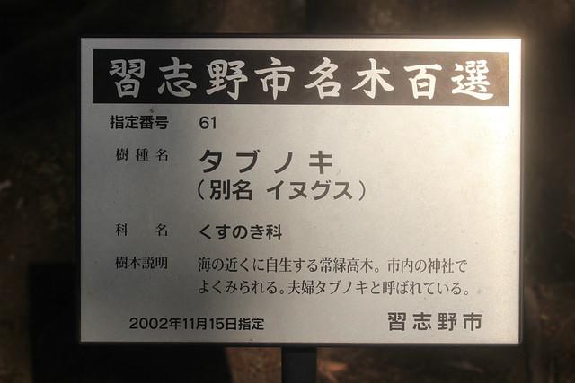 narashinoohara-gosyuin02021