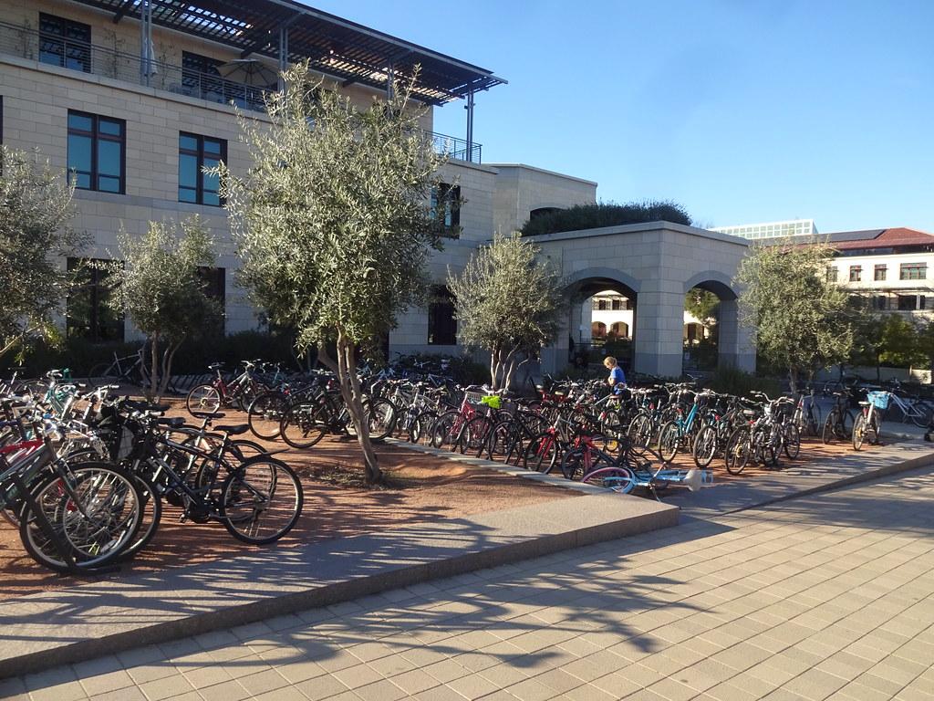 Bikes at stanford