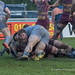 Hallam Chapman celebrates after scoring for Sedgley-7297