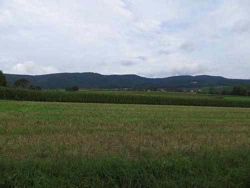 20140803 01 081 Jakobus Hügel Ortschaft Maisfeld