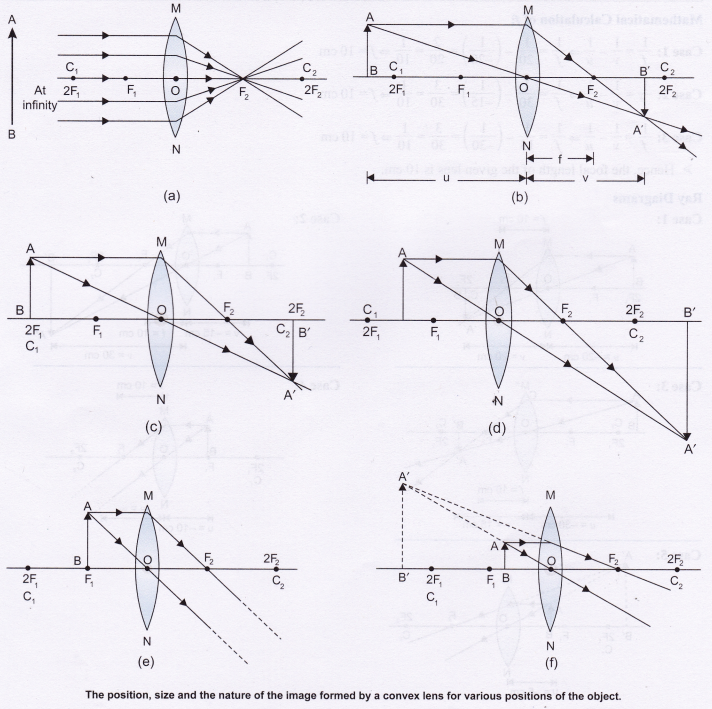 Science lab manual class 10 ncert Refraction Through Prism
