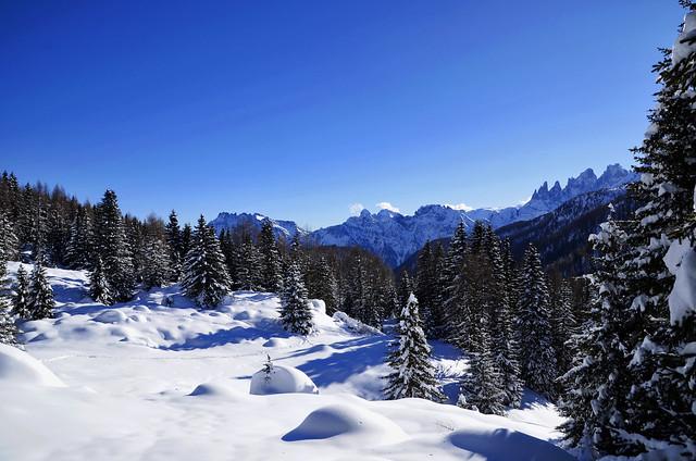 Just a Landscape - Horizontal View