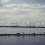 20170918-143326 Wolken Wasser Steine Vögel - Fehmarn
