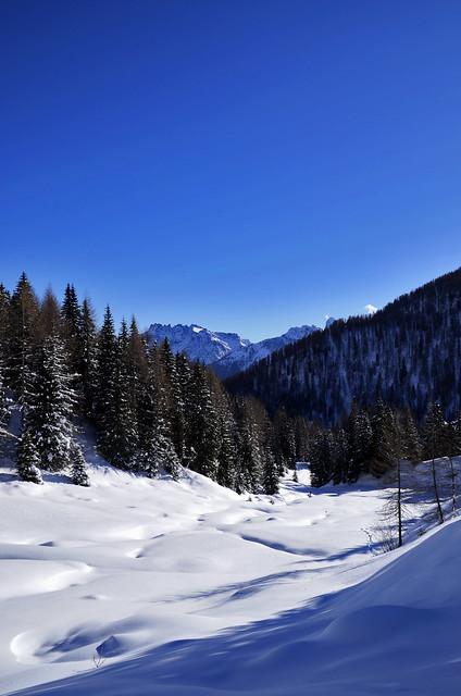 Just a Landscape - Vertical View