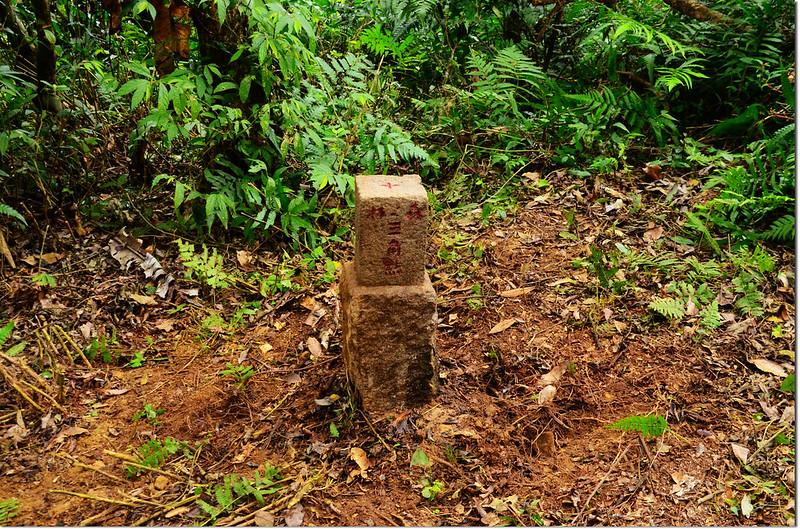 北里龍山補近(18)森林三角點(Elev. 813 m) 3