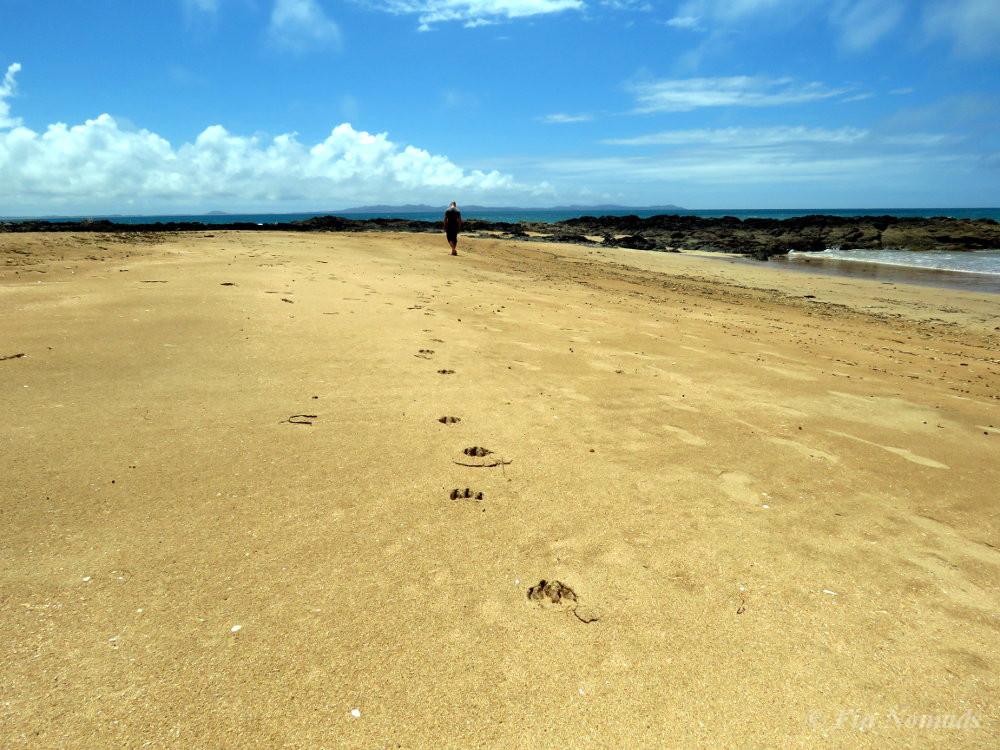 Mangowai beach travel
