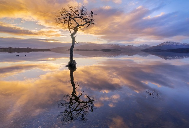 Milarrochy Bay Loch Lomond at Sunset.