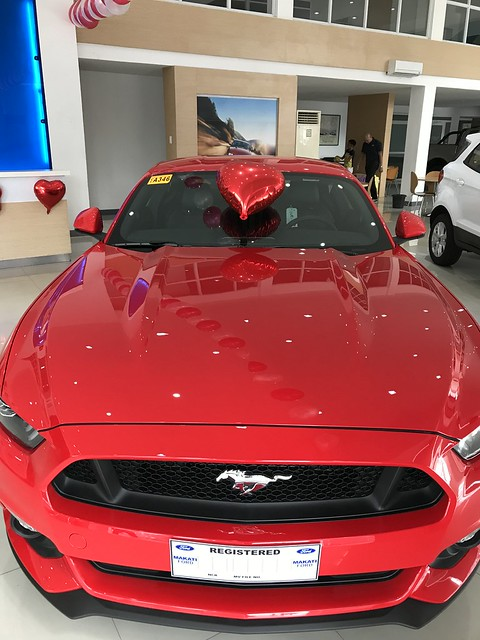 Valentines gift , Ford Mustang