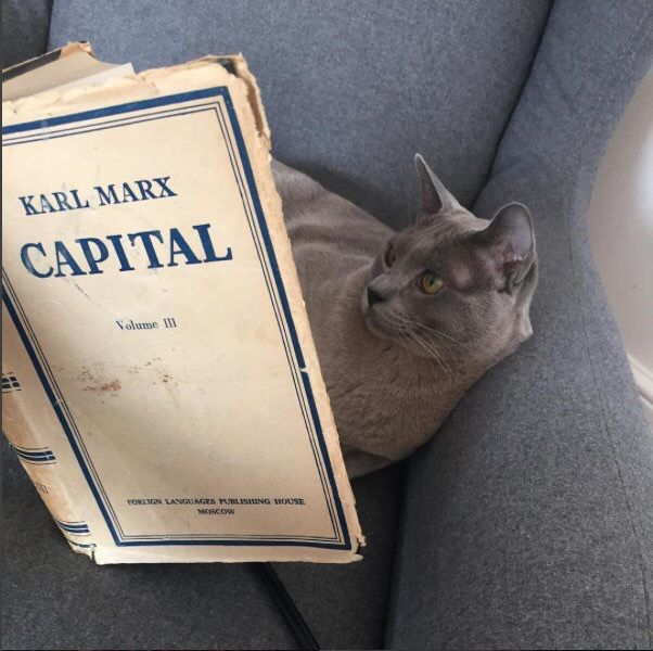 Marxist Cat