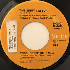 THE JIMMY CASTOR BUNCH:TROGOLDYTE(CAVE MAN)(LABEL SIDE-A)