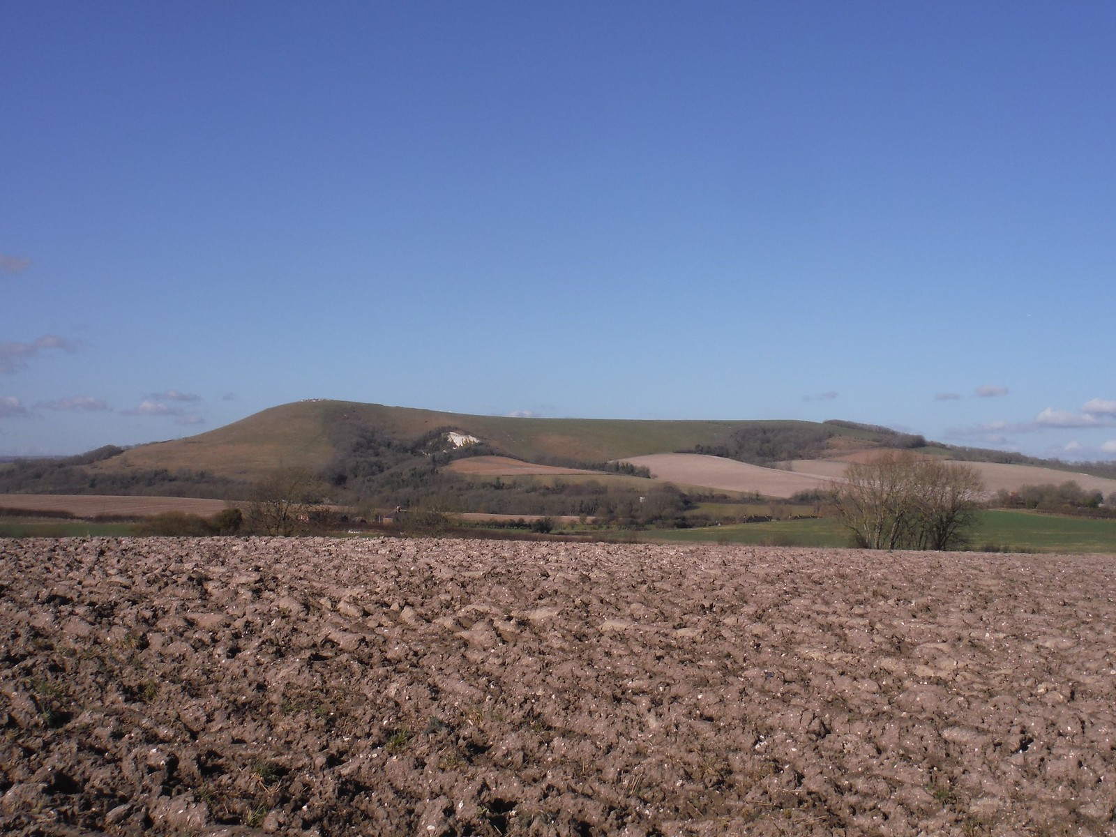 Mount Caburn across fields from Glynde SWC Walk 181 - Lewes to Seaford via West Firle