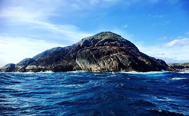 052/365 • Broughton Island - it's lovely to be somewhere wild... if only for a night • . #broughtonisland #portstephens #visitnsw #abcmyphoto #bellalunaboat #cruising #pacificocean #Summer2018 #eastcoastaustralia #liveaboard