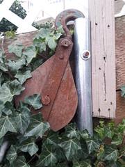 The romance of engineering, oxidized winch hook, pole, fence, wood, 2 X 4, concrete, ivy, Dash Point, Washington, USA