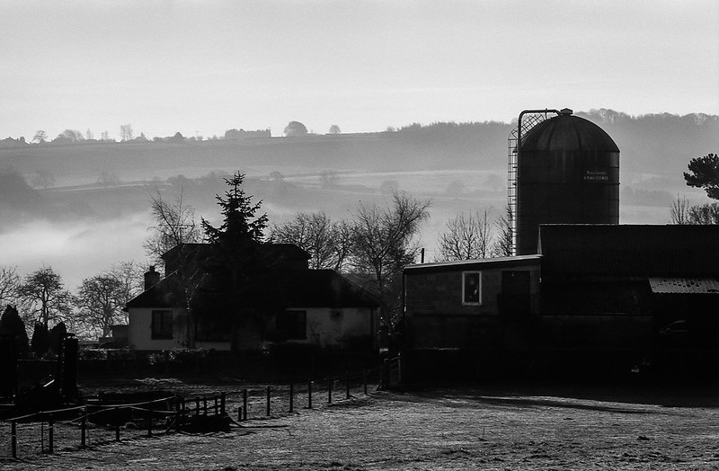 FILM - Morning farm