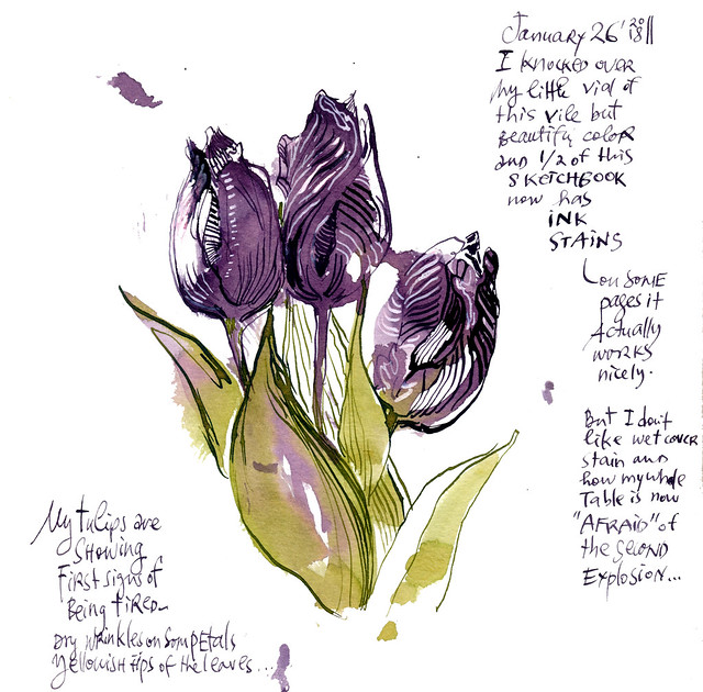 Sketchbook #111 - Tulips