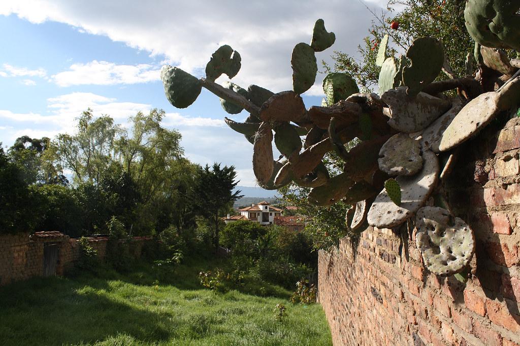 Villa-de-Leyba-2015_3