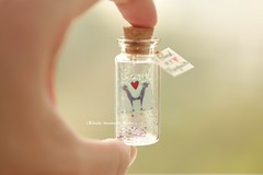 I found my penguin,Tiny message in a bottle,Miniatures,Personalised Gift,love card Valentine Card,Gift for her/him,Girlfriend gift