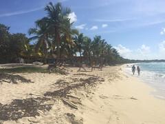 58 - Playa Isla Catalina