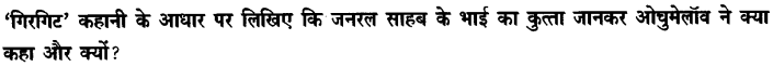 Chapter Wise Important Questions CBSE Class 10 Hindi B - गिरगिट 30