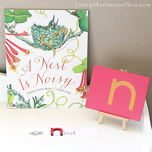 Nest-Themed Book, Sandpaper Letter, and Word Card
