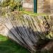 Log - Wootton Park, Henley-In-Arden, Warwickshire. UK