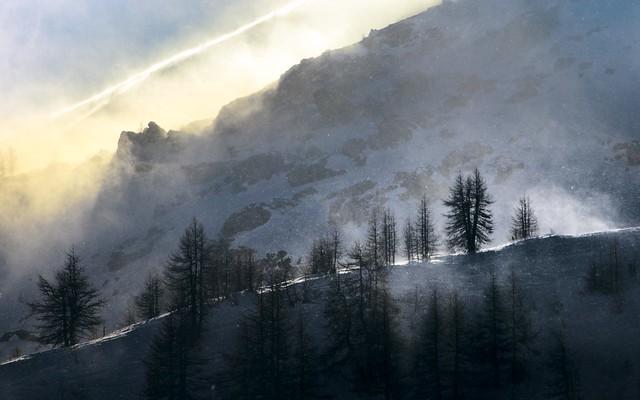 Snow storm on the ridge