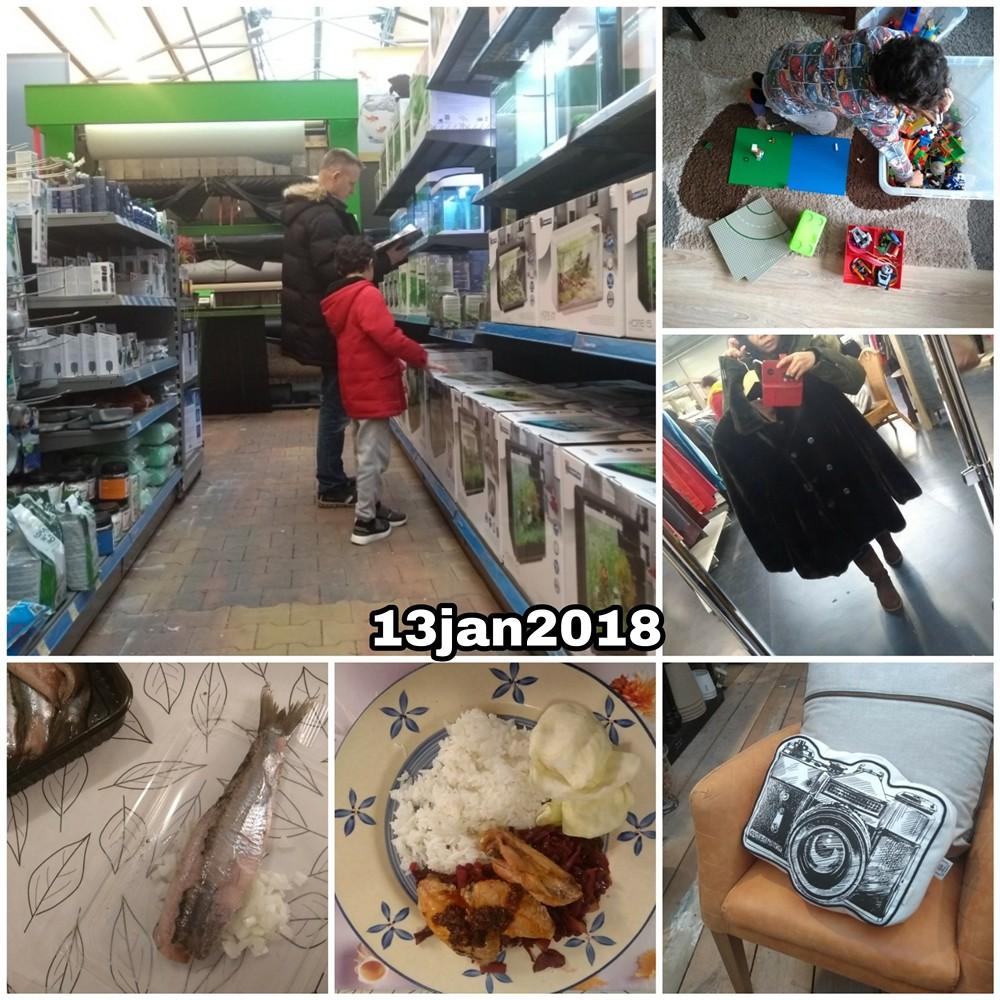 13 jan 2018 Snapshot