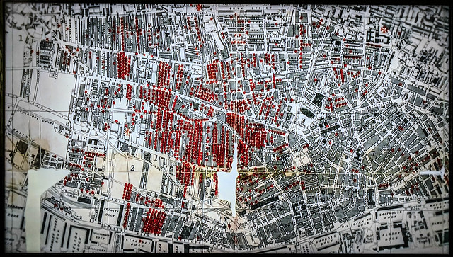 1854 Cholera Deaths Map of Liverpool
