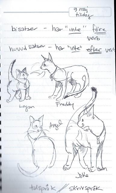 4cats-sketch